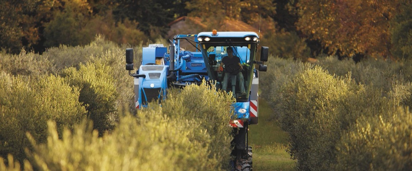 Grape Harvesters New Holland Braud